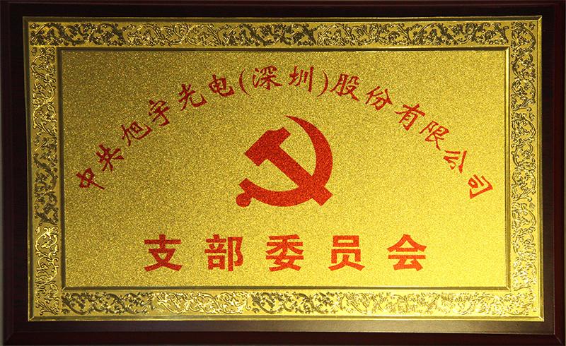 中共旭宇光电(深圳)股份有限公司支部委员会成立大会召开
